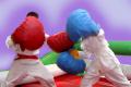 boks-gigantskiy-1.jpg